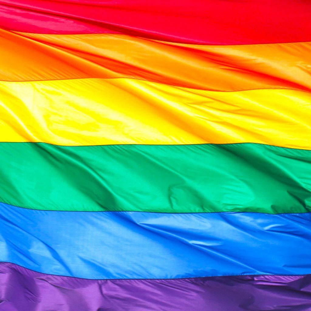 Rainbow Flag/ drapeau LGBT