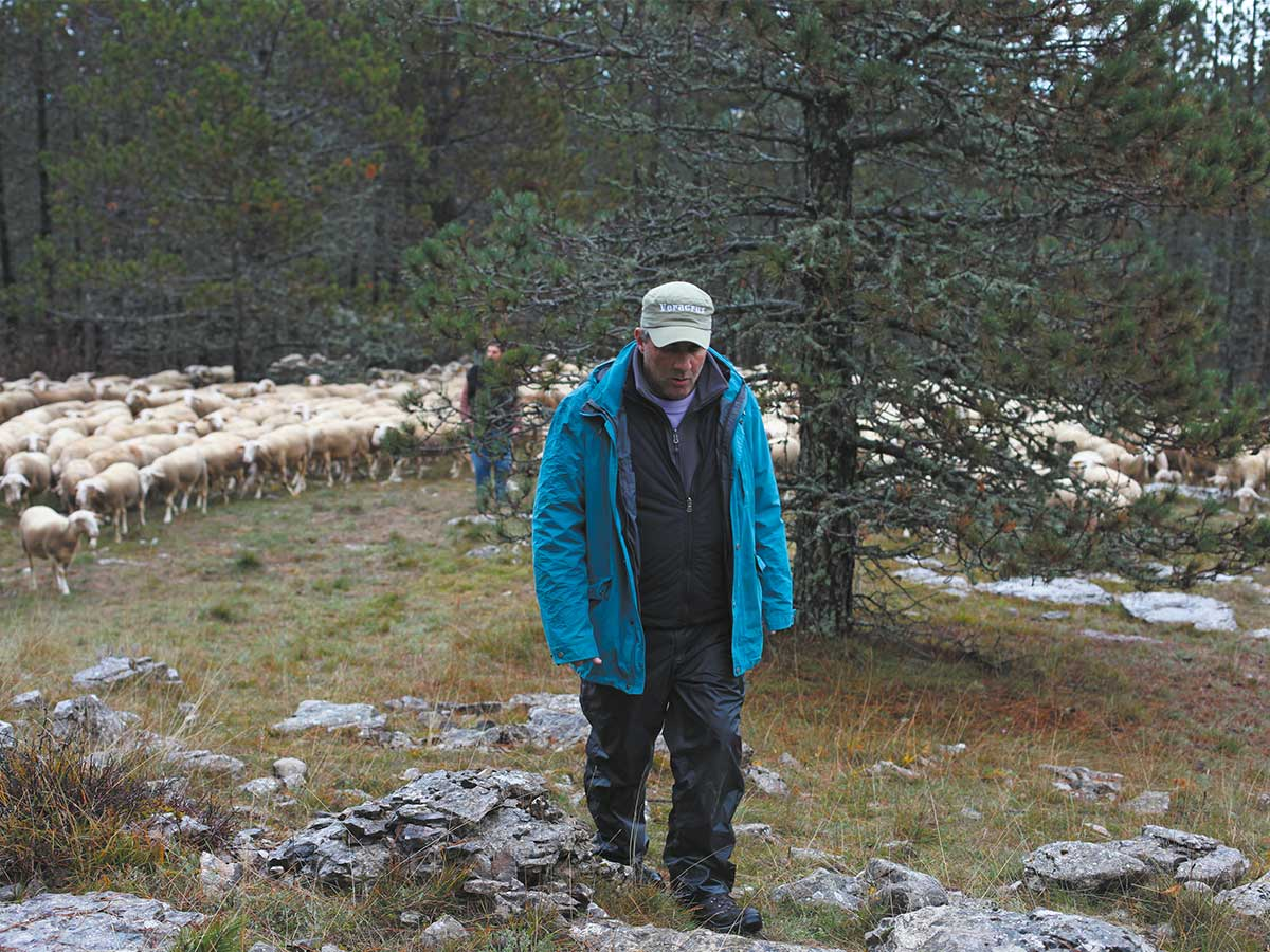 Guiraudie Rester vertical L'Inconnu du lac Alain Guiraudie