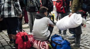 demandeurs d'asile,tester l'homosexualité