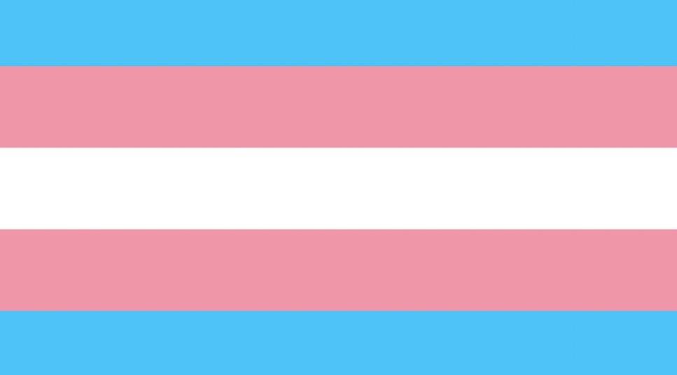 le drapeau trans